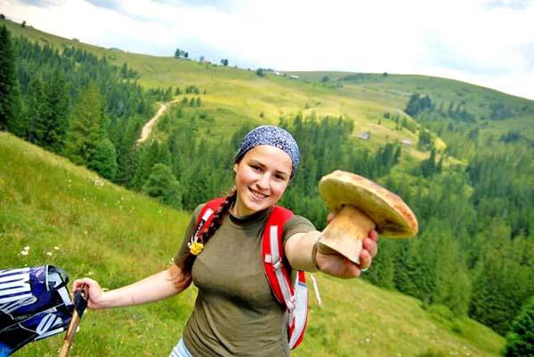Carpathian mushrooms are the best