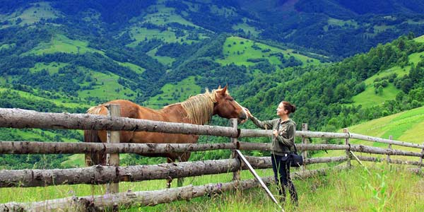 lady horse carpathians tour