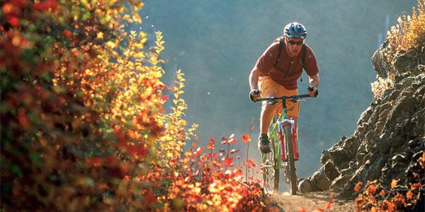bikes carpathians