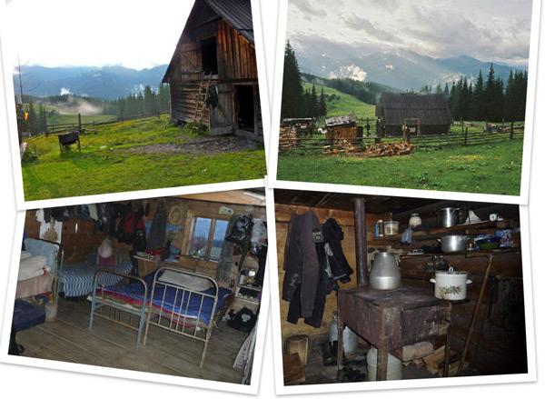 facilities on a dairy farm carpathians ukraine