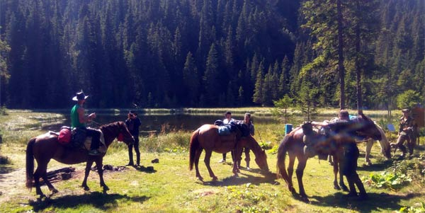 horse riding carpathians ukraine book