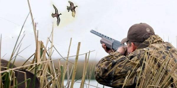 bird hunting ukraine